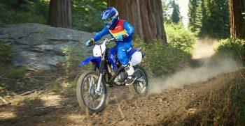 2019-Yamaha-TTR125LWE-EU-Racing_Blue-Action-004